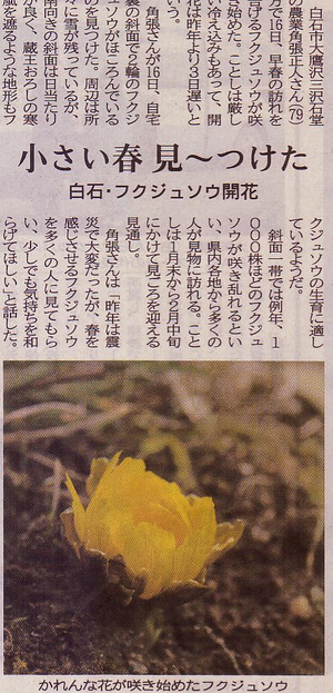 Scan10167
